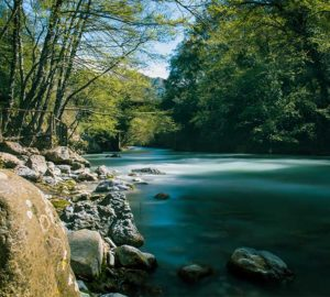 fiume lao calabria